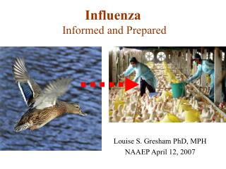 Influenza   Informed and Prepared