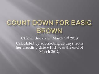 Count Down FoR Basic Brown