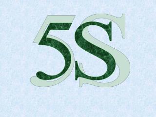 HISTÓRICO DO 5S