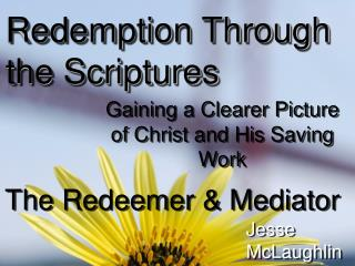 The Redeemer & Mediator