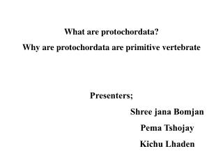 What are protochordata? Why are protochordata are primitive vertebrate Presenters; 					Shree jana Bomjan 					Pema Tsho