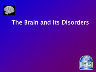 The Brain and Its Disorders