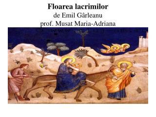 Floarea lacrimilor de Emil G â rleanu prof. Musat Maria-Adriana