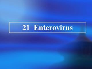 21 Enterovirus