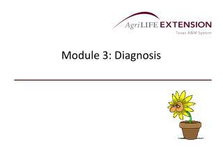Module 3: Diagnosis