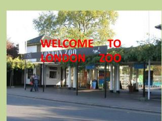 WELCOME     TO                            LONDON     ZOO