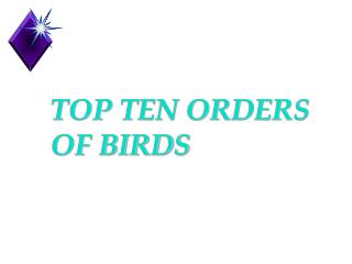 TOP TEN ORDERS OF BIRDS