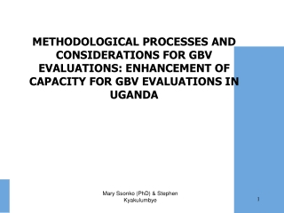 Over view of GBV evaluations