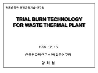 TRIAL BURN TECHNOLOGY  FOR WASTE THERMAL PLANT