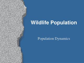 Wildlife Population