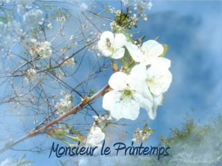 Monsieur le Printemps