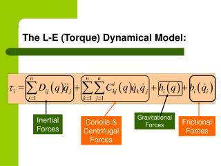 The L-E (Torque) Dynamical Model:
