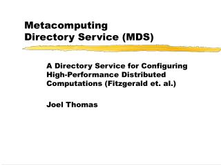 Metacomputing  Directory Service (MDS)