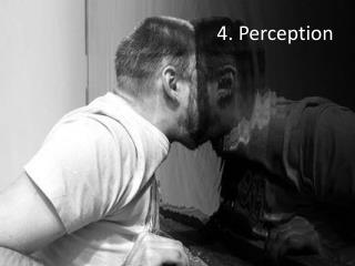 4. Perception