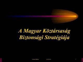 A Magyar K zt rsas g Biztons gi Strat gi ja