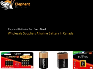 Elephantbatteries- Get Best Quality Alkaline