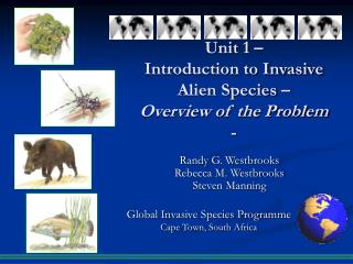 Unit 1 – Introduction to Invasive Alien Species – Overview of the Problem -