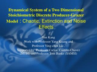Dynamical System of a Two Dimensional Stoichiometric Discrete Producer-Grazer Model : Chaotic, Extinction and Noise Ef