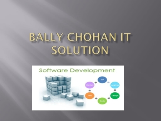 Bally Chohan IT Services
