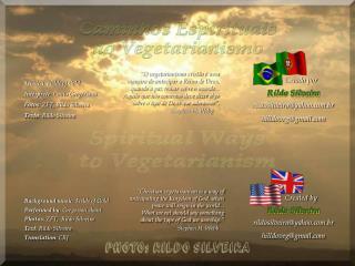 Música : Fields of Gold Intérprete : Canto Gregoriano Fotos : ZFT, Rildo Silveira Texto : Rildo Silveira