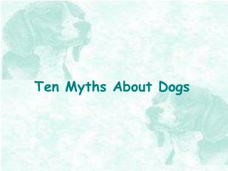 Ten Myths About Dogs