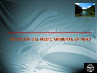 SITUACIÓN DEL MEDIO AMBIENTE EN PERÚ
