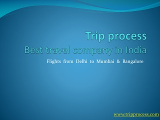 Trip process, best travel company in India