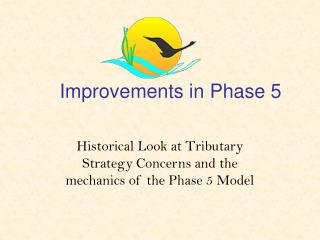 Improvements in Phase 5