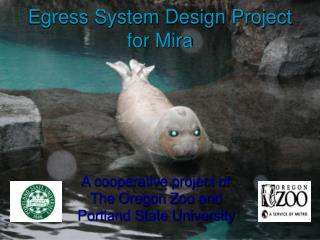Egress System Design Project for Mira