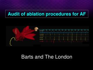 Audit of ablation procedures for AF