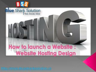 Website design and hosting : How to launch a Website?