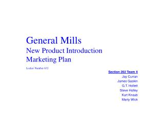 General Mills New Product Introduction Marketing Plan