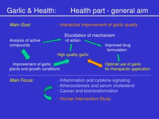 Garlic & Health:	Health part - general aim