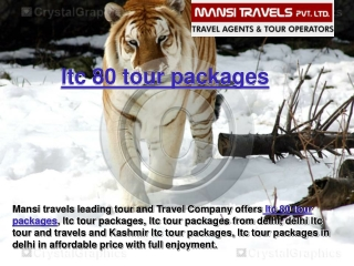 ltc 80 tour packages