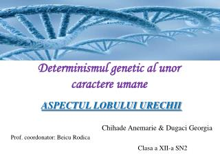 Determinismul genetic al unor caractere umane