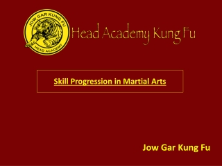 Skill Progression in Martial Arts