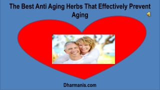The Best Anti Aging Herbs That Effectively Prevent Aging