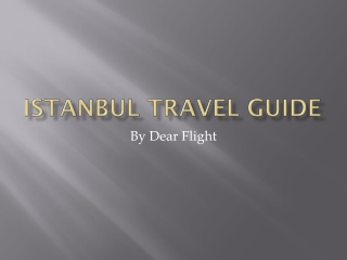 Istanbul Travel Information
