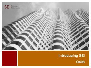 Introducing SEI Q408