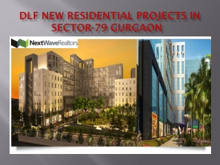 Dlf Proojects Gurgaon Sector 79