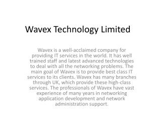Wavex is a well-acclaimed company for providing IT services