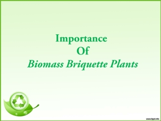 Importance Of Biomass Briquetting Plant