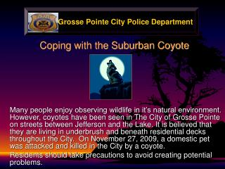 Coping with the Suburban Coyote