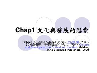 Chap1 文化與發展的思索