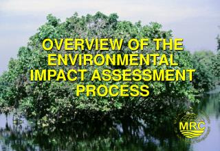 OVERVIEW OF THE ENVIRONMENTAL IMPACT ASSESSMENT PROCESS