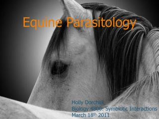 Equine Parasitology