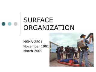 SURFACE ORGANIZATION