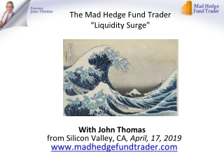 "The Mad Hedge Fund Trader ""Liquidity Surge"""