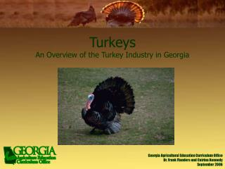 Turkeys An Overview of the Turkey Industry in Georgia