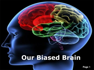 Our Biased Brain